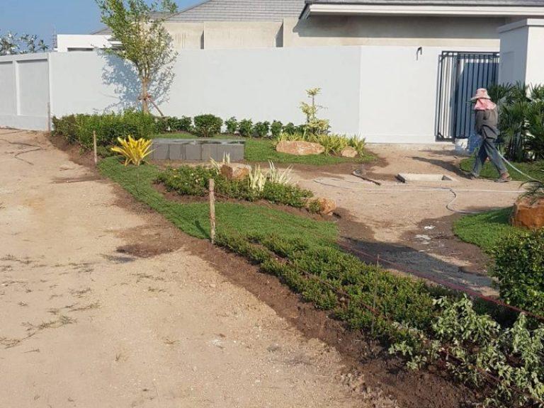 Garden_200324_0067