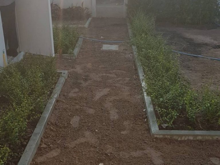 Garden_200324_0072