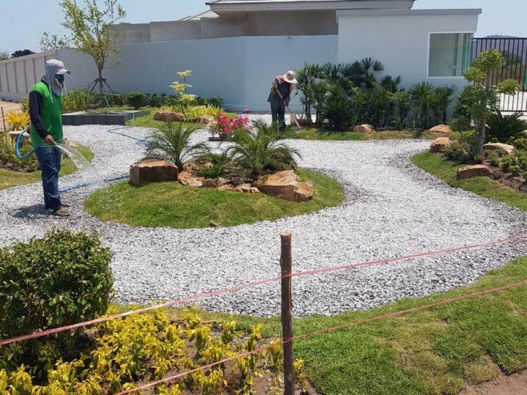 Garden_200324_0074